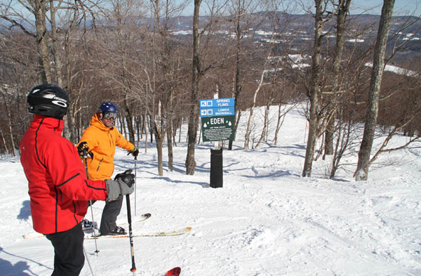 Guide To Skiing Glades Tree Skiing For Families Safe